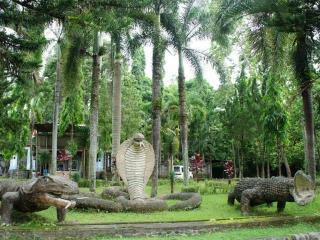 Бали. Представление с дрессированными крокодилами