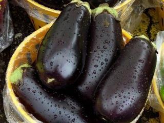 2 рецепта консервирования баклажанов: баклажаны на зиму для салата