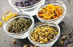 Народные рецепты с лекарственными травами от остеопороза