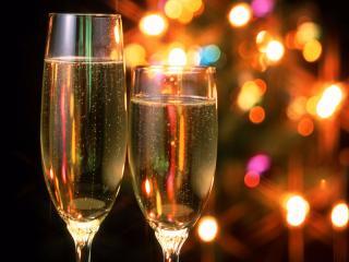 Шампанское – напиток богов. Готовимся к Новому 2014 году Лошади