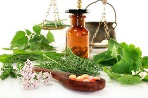 Использование лопуха в народной медицицне, кулинарии, косметологии