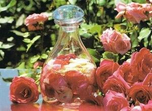 Как приготовить розовое масло в домашних условиях 34