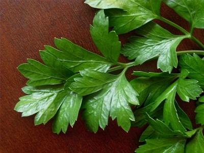 Зелень на столе для вашего здоровья