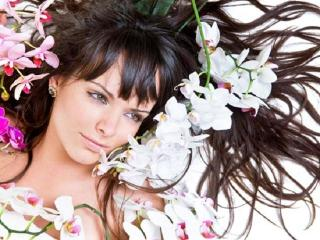 Народные средства из лекарственных растений. Лечение выпадения волос