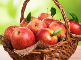 Здоровое питание - и не страшен авитаминоз!