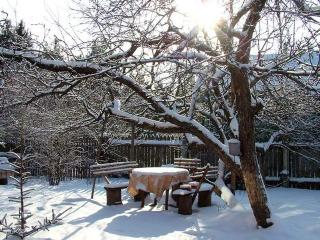 Зимние работы на садовом участке и посев семян на бумагу