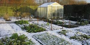 Итак, какие работы необходимо запланировать и выполнить в зимние месяцы?