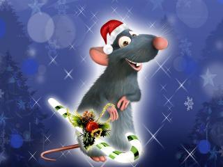 В чем встречать Новый 2008 год Крысы