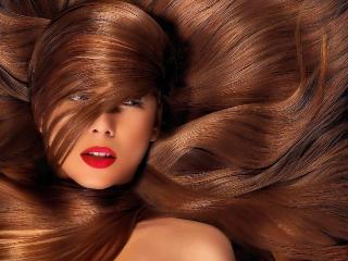 Красота ваших волос. Секреты красивой окраски волос