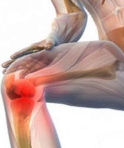 средство для суставов и хрящей желатин