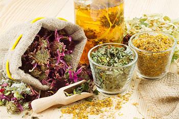 Полезные свойства лекарственных трав