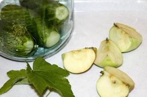 Рецепты домашних заготовок огурцов