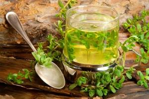 Рецепты народной медицины для органов дыхания