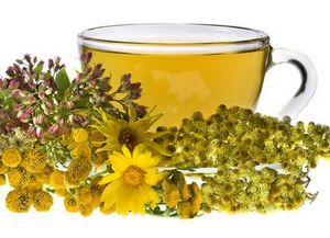 Лекарственные растения для вашего здоровья