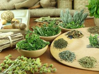 Лечение лекарственными растениями. Немного истории