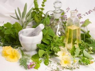 Лекарственные растения для сухой кожи лица. Рецепты красоты вашего лица